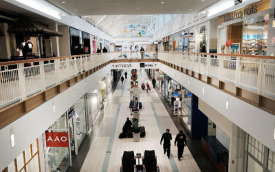 Shopping Malls and Landlords