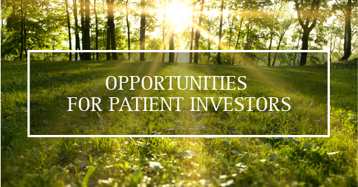 There are always opportunities for patient investors